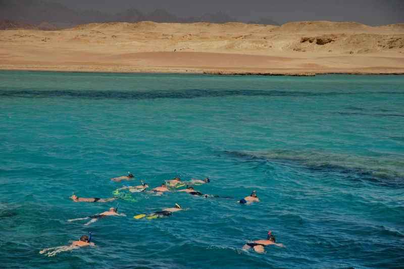 Snorkeling in Ras Mohamed