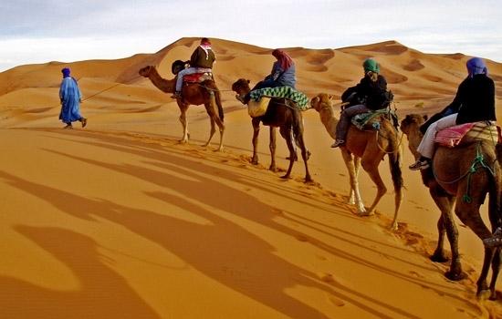 Extension Désert à Partir de Marrakech
