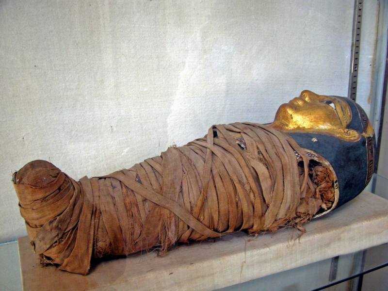 A Mummy of a Child, Greco-Roman Museum