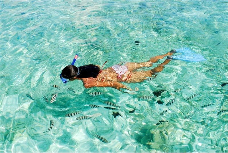 Snorkeling at the Red Sea