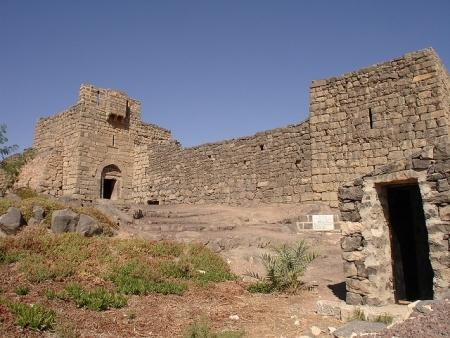 Tour di Mezza Giornata ai Castelli del Deserto Orientale