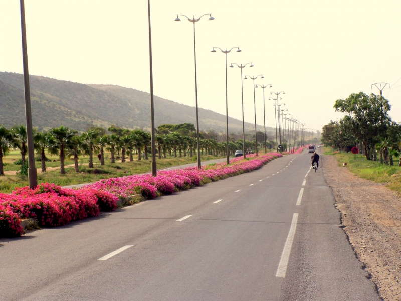 Agadir Streets