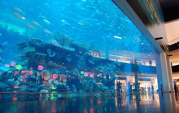 Aquário e Zoológico Aquático de Dubai