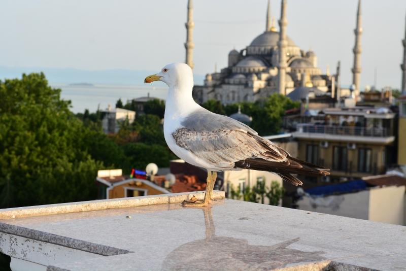 Roteiro Istambul 4 Dias