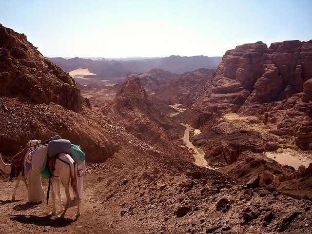 Paysage lors de l'ascension du Mont Sinaï