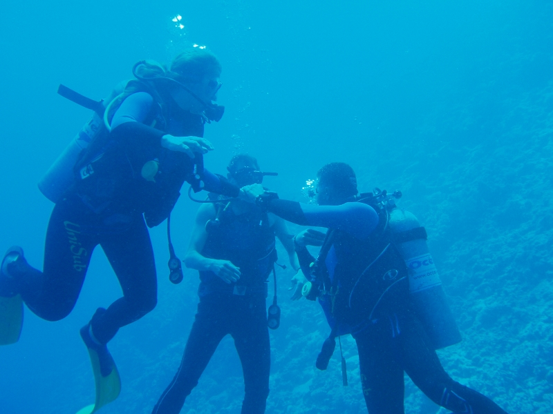 Red Sea diving experience, Egypt