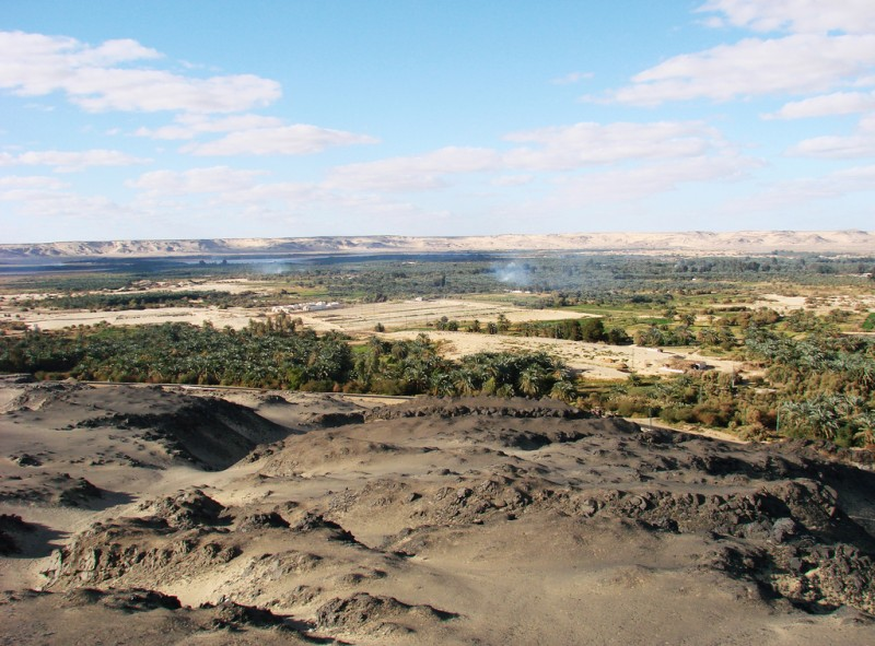Bahariya Oasis in the Western Desert