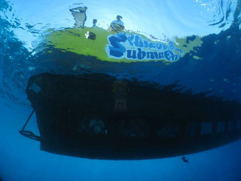 Semi Submarine, Sharm Red Sea