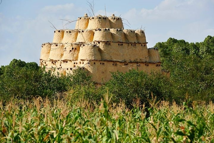 A Vila Tunis em Fayoum