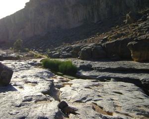 Wadi Damm of Oman