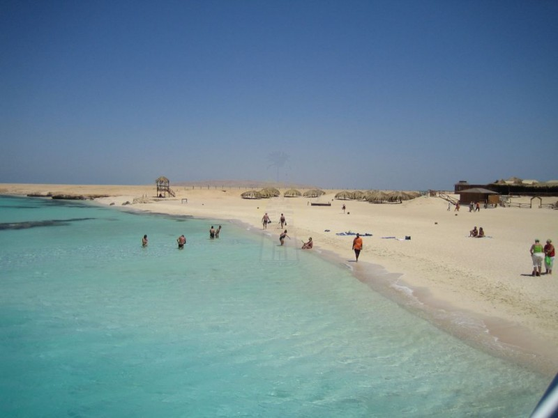Mahmeya Island, Red Sea
