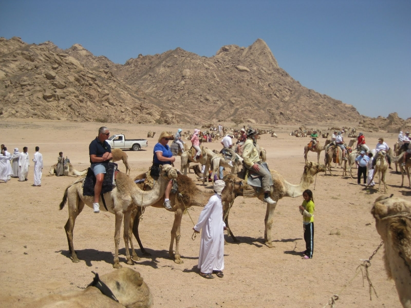 Camel Ride through Sharm Desert
