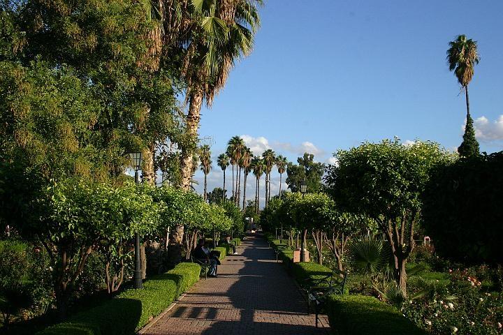 Día 2 : El Jardín de la Menara.