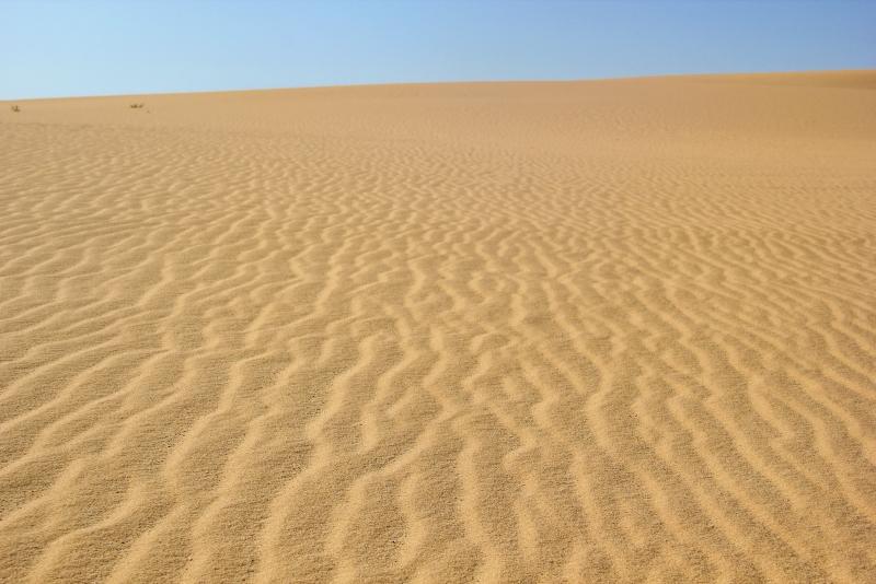 Short Break at Siwa Oasis