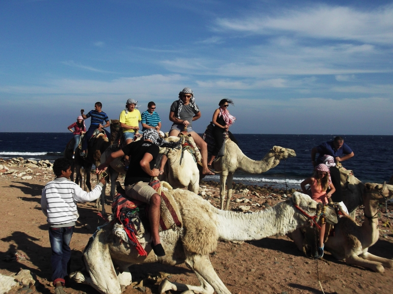 Camel Ride in Blue Hole, Dahab