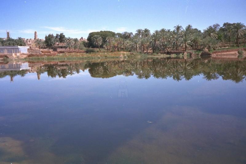 Dakhla Oasis, Western Desert