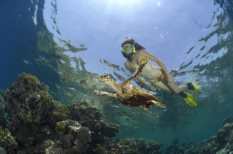 Snorkeling at Mahmya Island - Hurghada