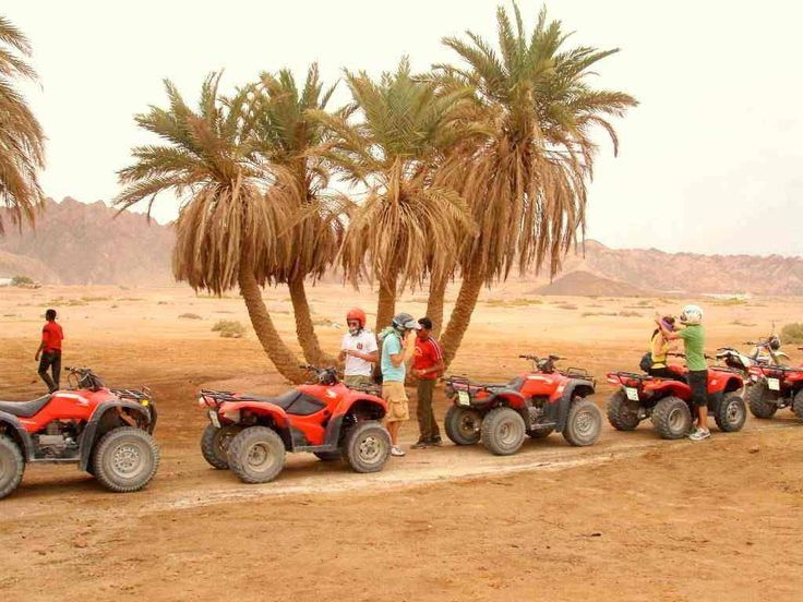 Desert Safari Adventure by Quad Bike in Red Sea - Egypt