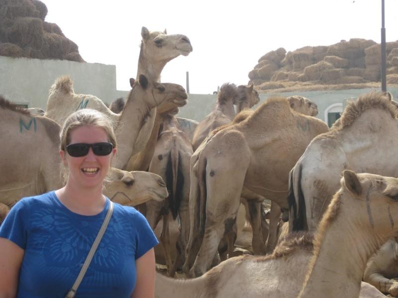 Mercato dei Cammelli del Cairo