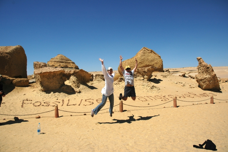 Fayoum Desert