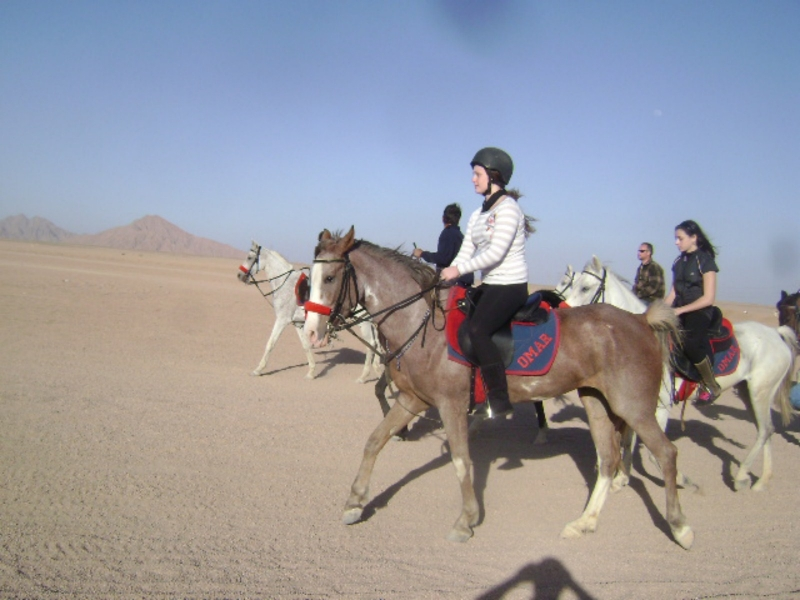 Horse Riding in Sharm Desert