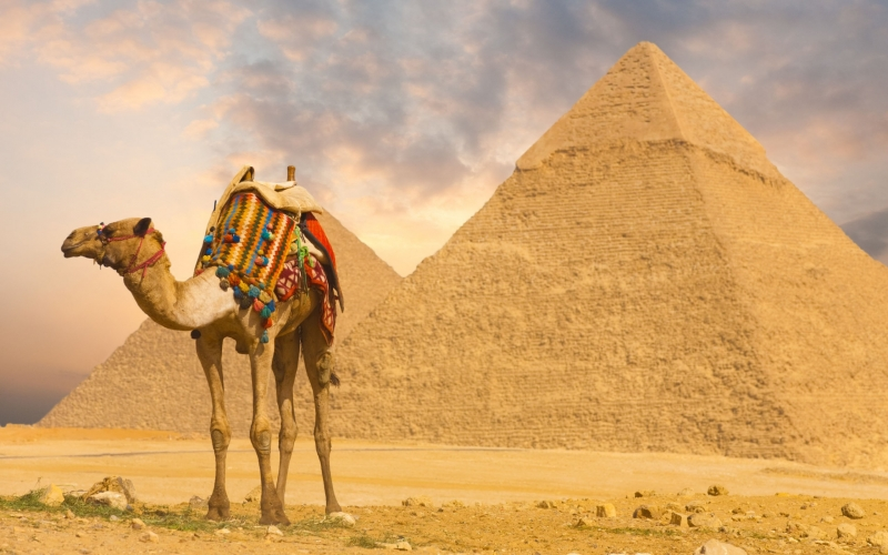 埃及尼罗河观光游