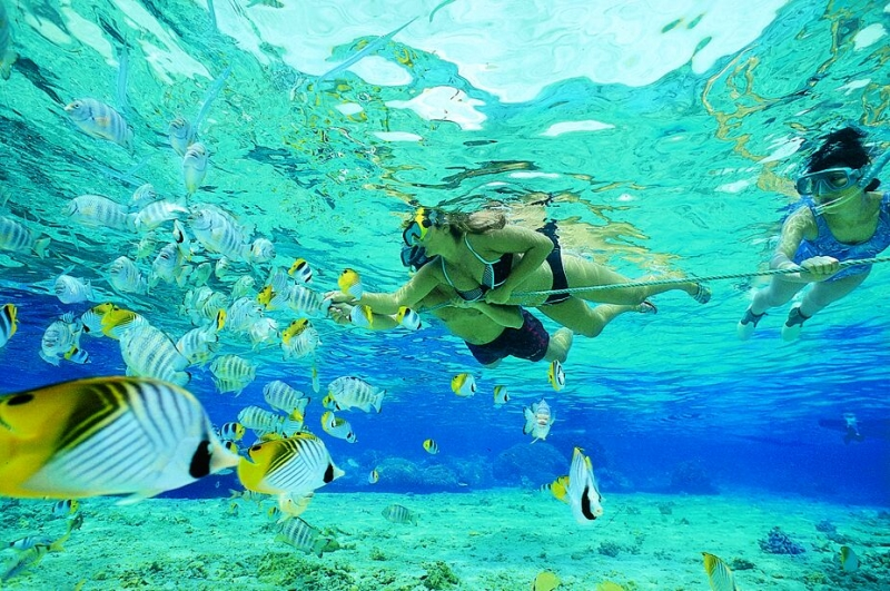 Isola Giftun da Hurghada