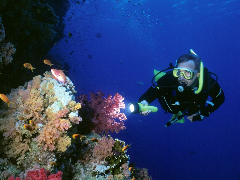 Scuba Diving Experience, Red Sea