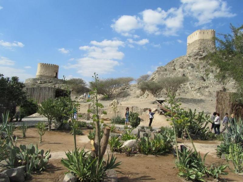 The Al Thowara Oasis