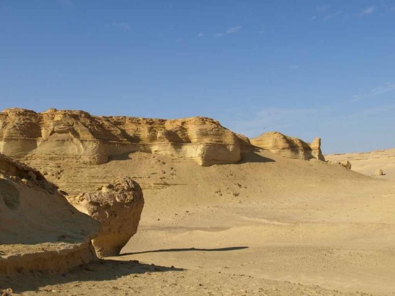 Vallée des Baleines, Wadi el Hitan