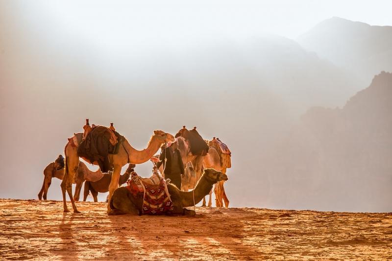 Jordanien Wanderreise und Wadi Rum Camp