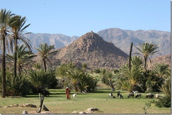Excursion à Tafraoute depuis Agadir