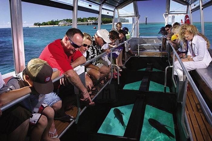 Поездка на лодке со стеклянным дном  (в Шарм Эль-Шейхе)