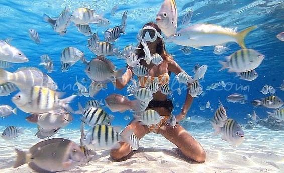 Snorkeling at Mahmya Island in Makadi