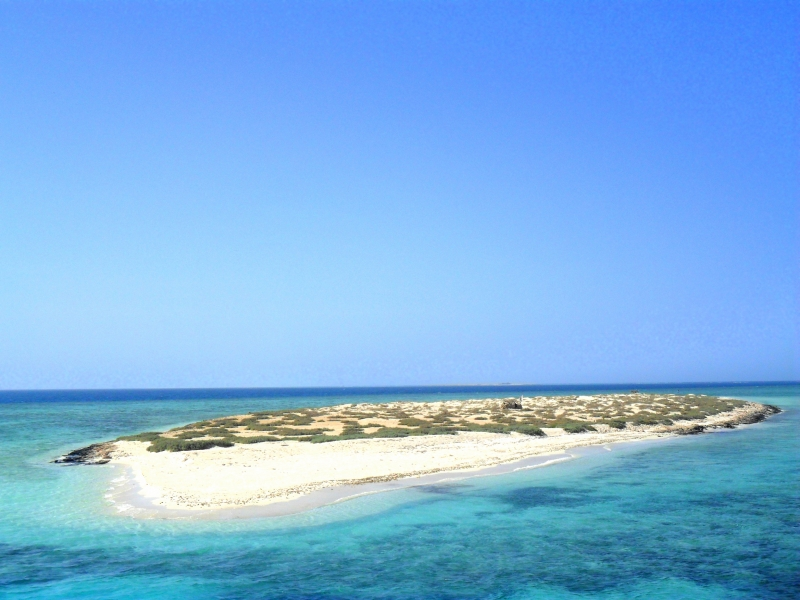 Snorkeling Trip To The Tropical Islands Of Hamata In Marsa