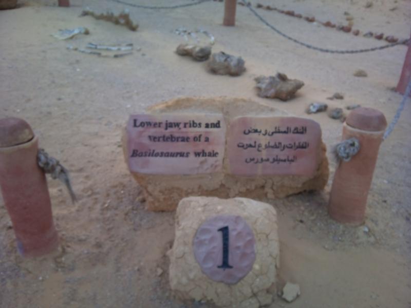 Waid Al Hitan