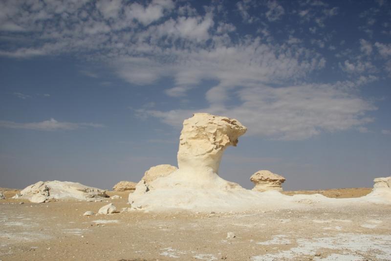 The White Desert