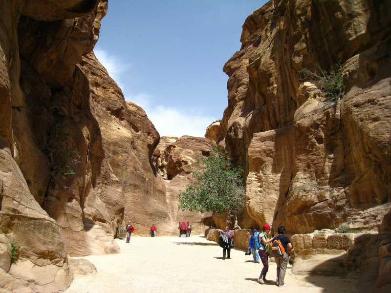 The Siq Canyon in Petra City