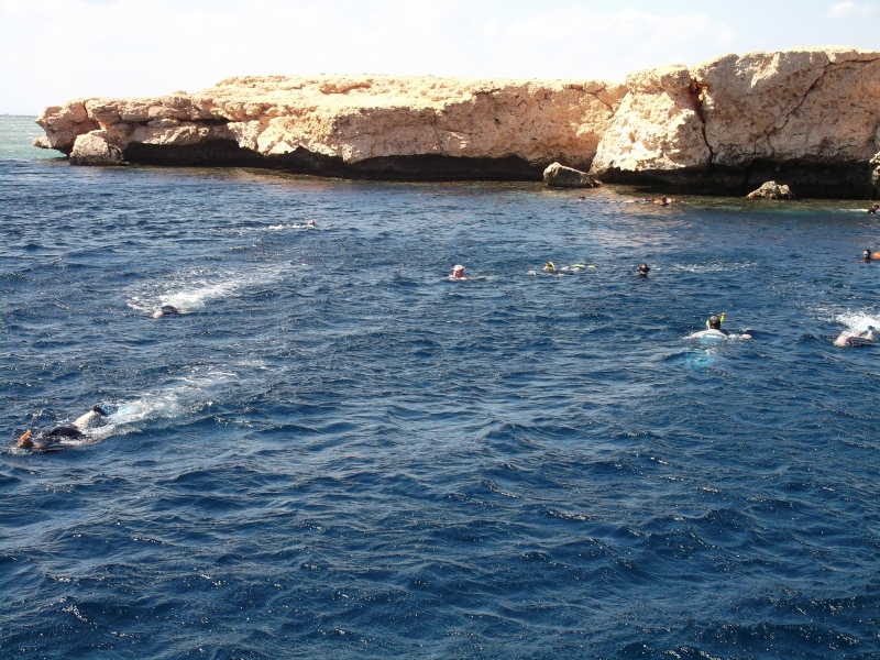 Snorkel around Ras Mohamed
