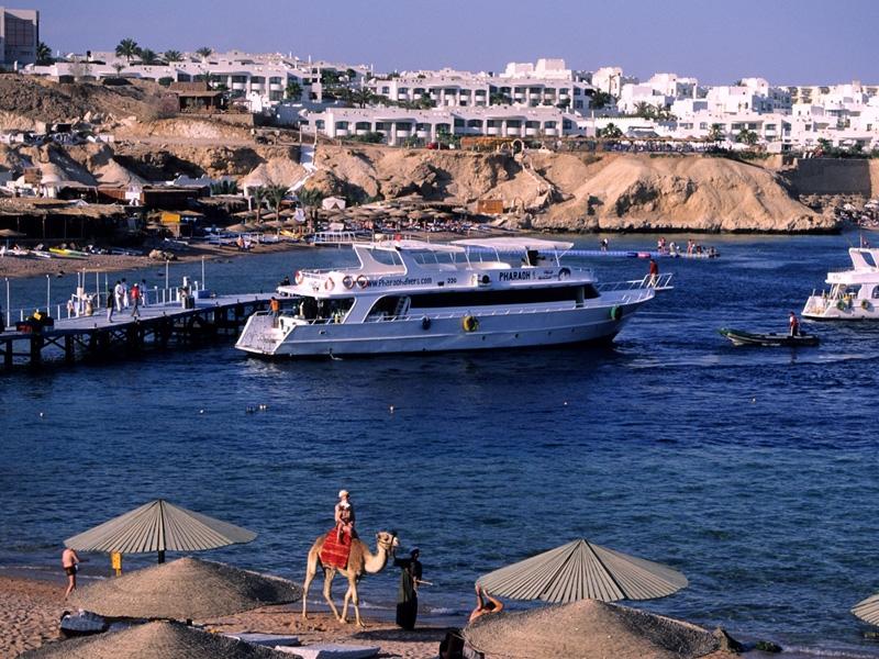 Shark Bay, Sharm