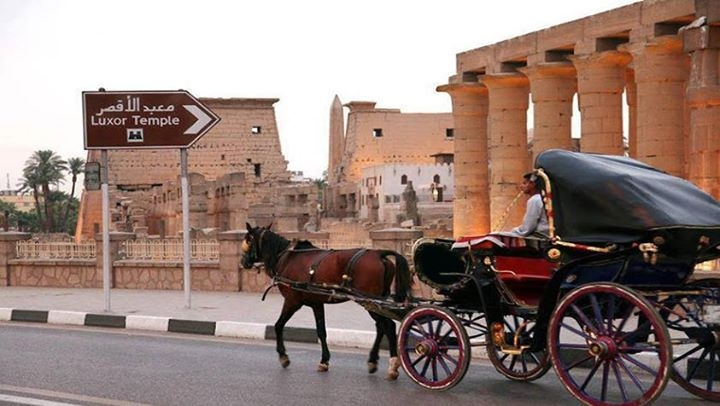Cairo & New Year Cruise by Air