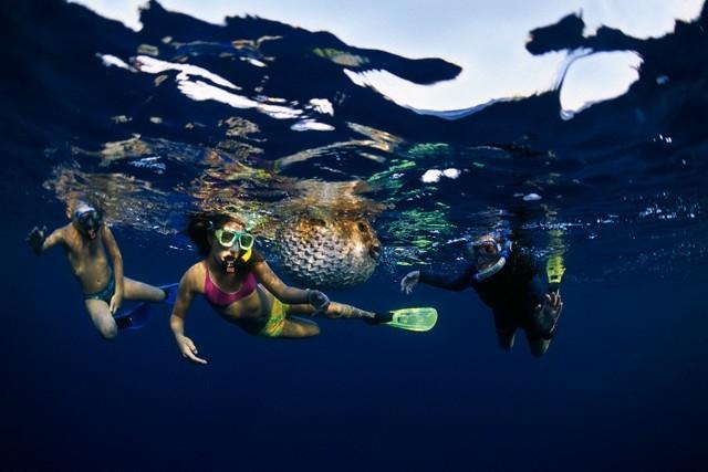 Snorkeling in Hurghada, Red Sea