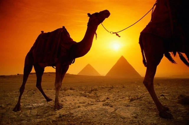 Giza Pyramids by the Sunset