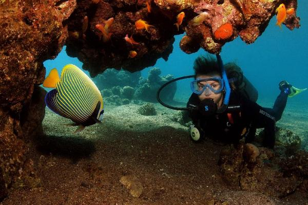 Diving at The Red Sea, Hurghada
