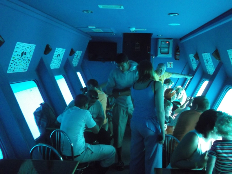 Nautilus Catamaran ab Sharm Hafen