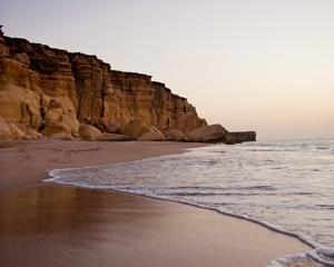 Ras Al Hadd Beach Oman