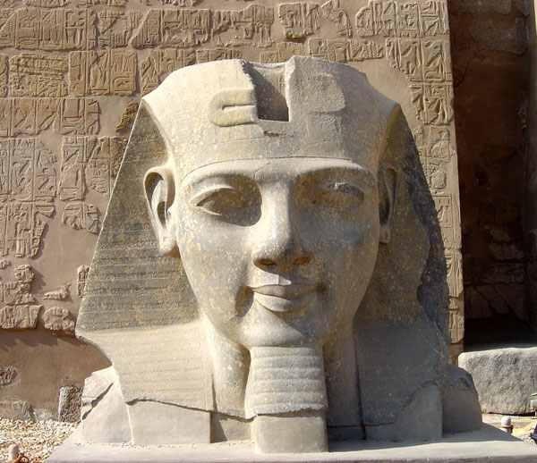 Tête de Ramsès II posée au sol