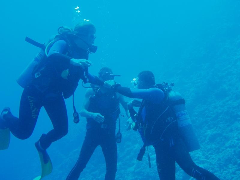 Introductory Diving around Tiran Island