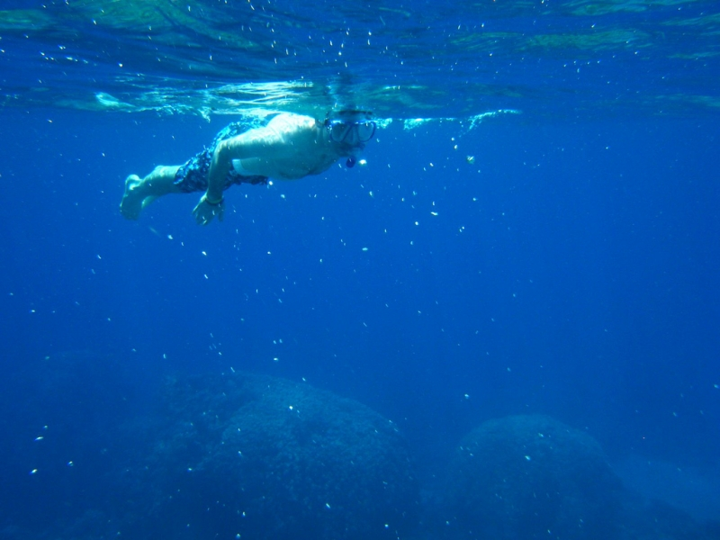 Schnorcheln in Tiran Insel