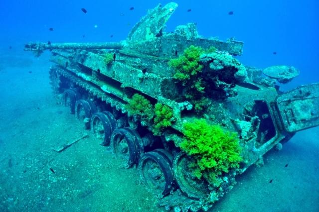 Tank Wreck, Aqaba Dive Site